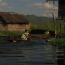 1151-inle